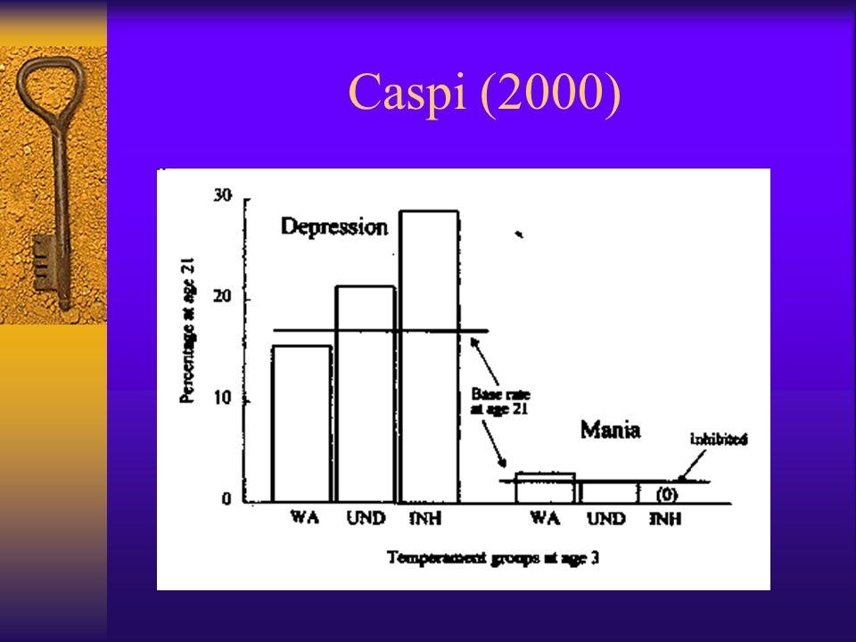 Caspi (2000)
