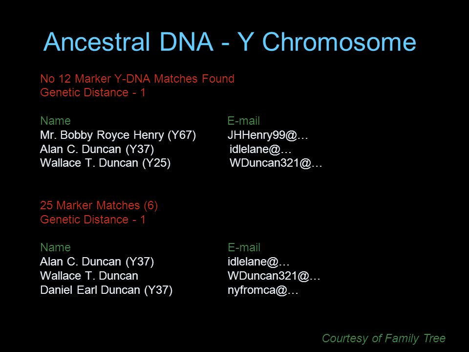 Ancestral DNA - Y Chromosome No 12 Marker Y-DNA Matches Found Genetic Distance - 1 Name E-mail Mr.