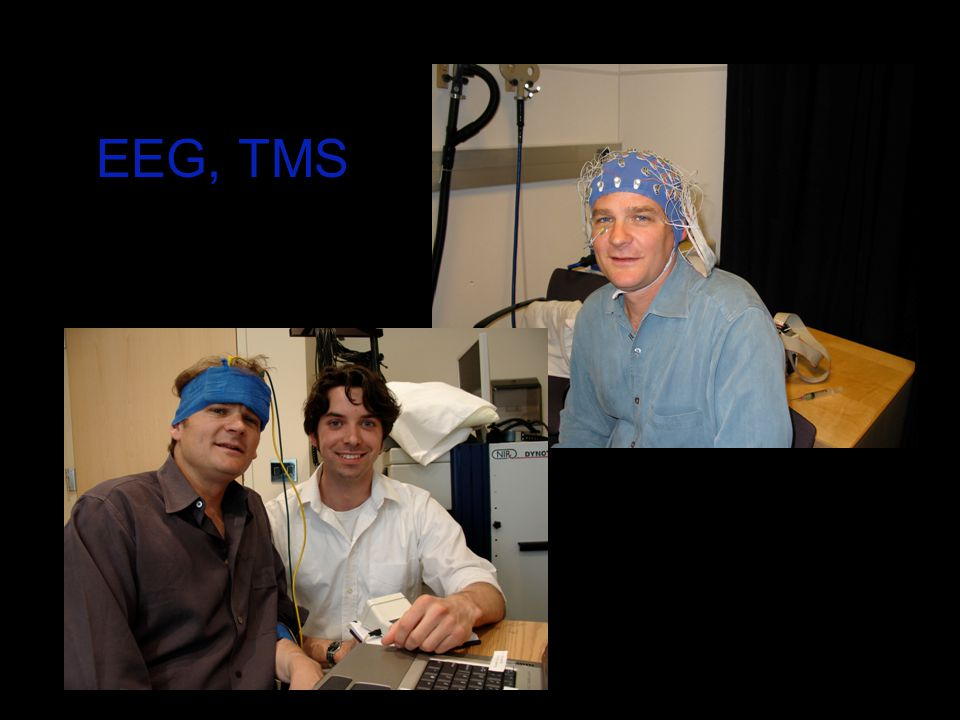 EEG, TMS