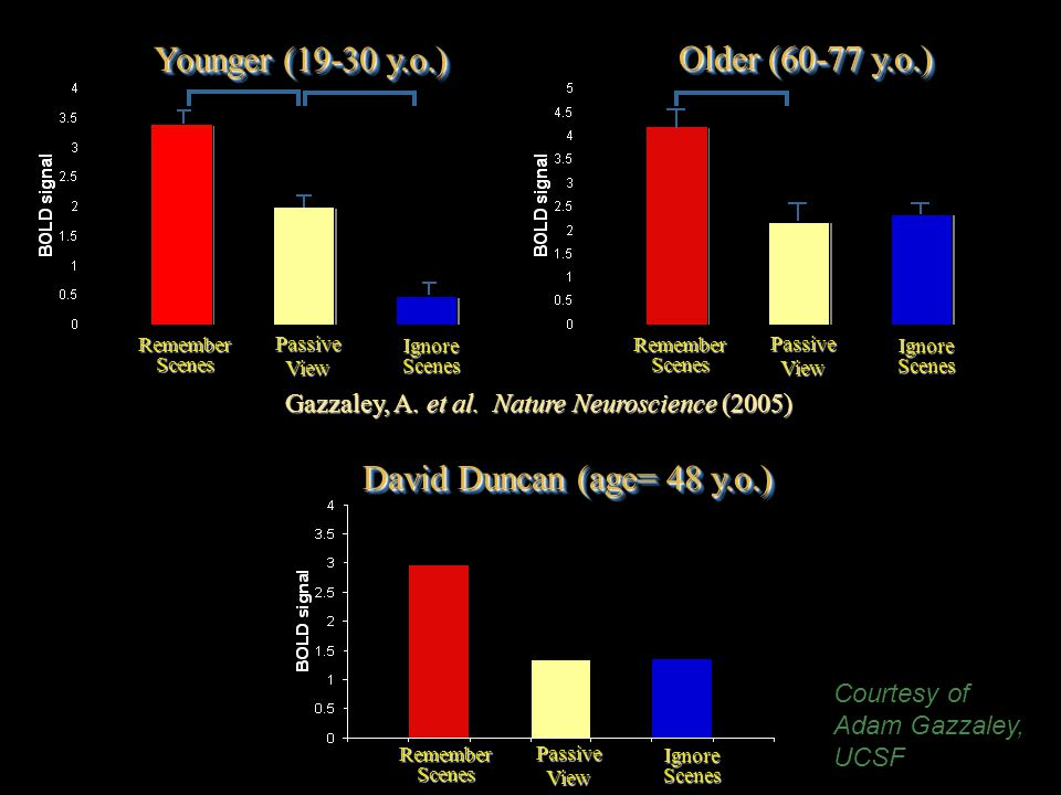 RememberScenes IgnoreScenes PassiveView Younger (19-30 y.o.) Older (60-77 y.o.) Gazzaley, A.