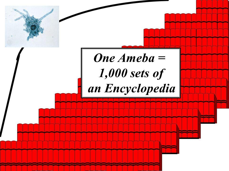 One Ameba = 1,000 sets of an Encyclopedia