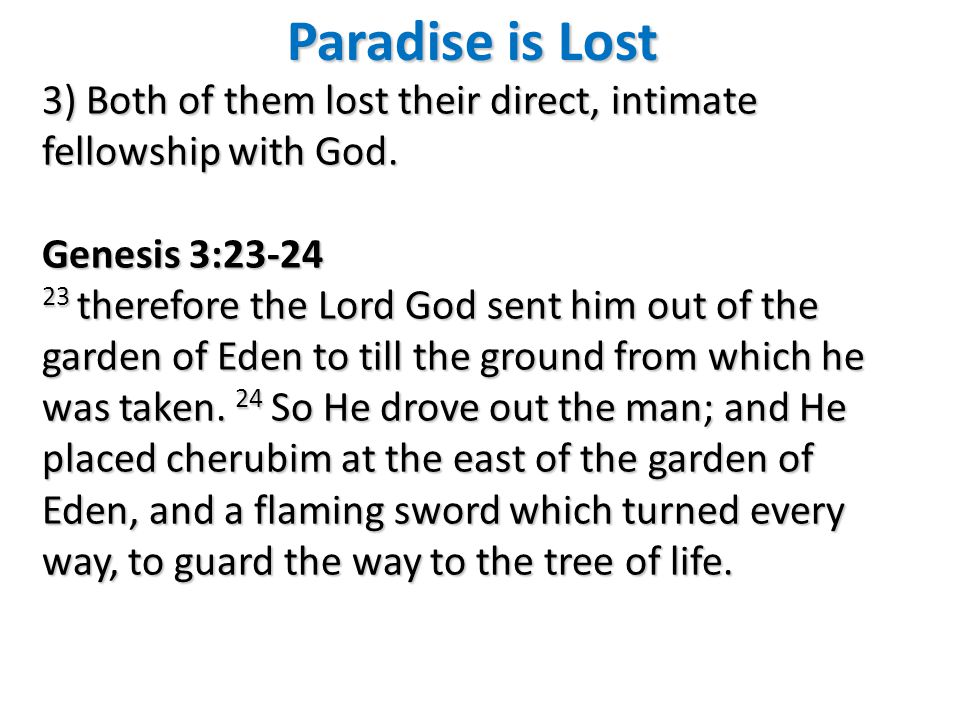 Paradise is Lost 3) Both of them lost their direct, intimate fellowship with God.