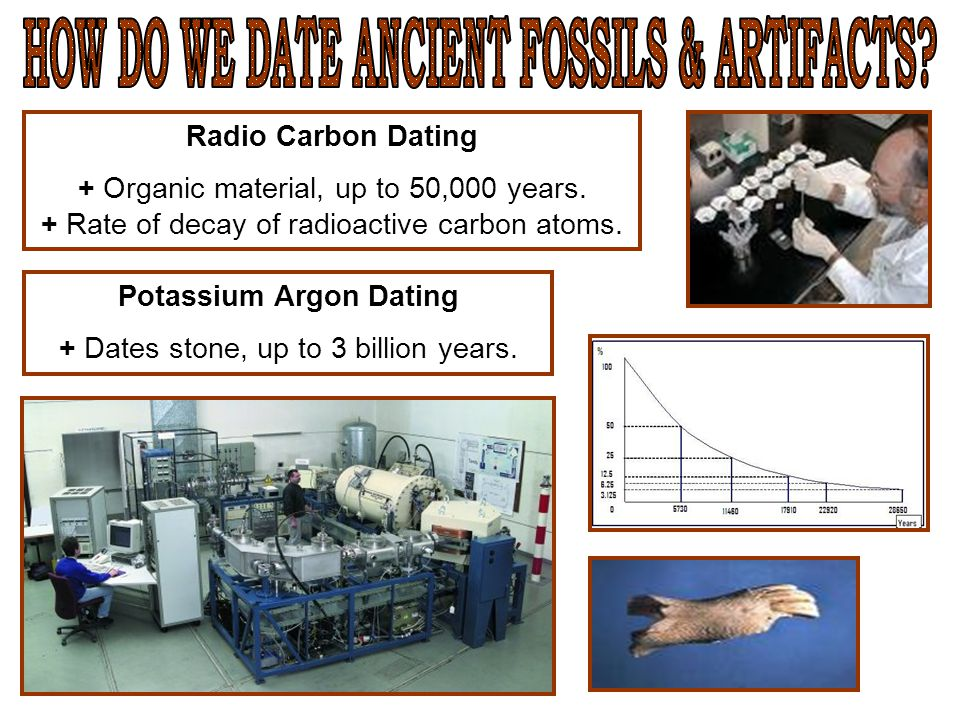 Radio Carbon Dating + Organic material, up to 50,000 years. + Rate of decay of radioactive carbon atoms. Potassium Argon Dating + Dates stone, up to 3
