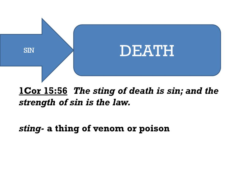 MADE SINNERS SIN JUDGMENT TO CONDEMNATION DEATH 1Cor 15:56 The sting of death is sin; and the strength of sin is the law. sting- a thing of venom or p
