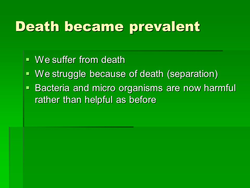 Death became prevalent We suffer from death We suffer from death We struggle because of death (separation) We struggle because of death (separation) Bacteria and micro organisms are now harmful rather than helpful as before Bacteria and micro organisms are now harmful rather than helpful as before