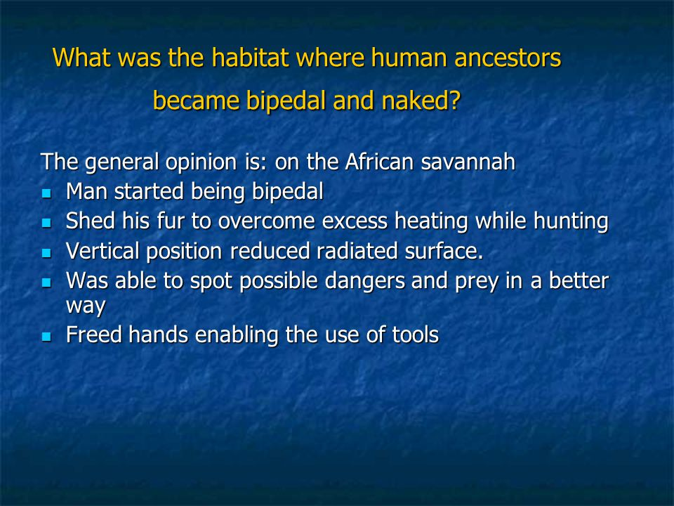 What was the habitat where human ancestors became bipedal and naked.