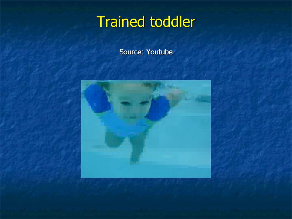 Trained toddler Source: Youtube