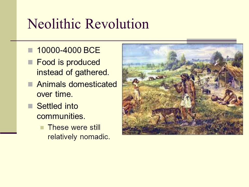 Neolithic Revolution 10000-4000 BCE Food is produced instead of gathered. Animals domesticated over time. Settled into communities. These were still r