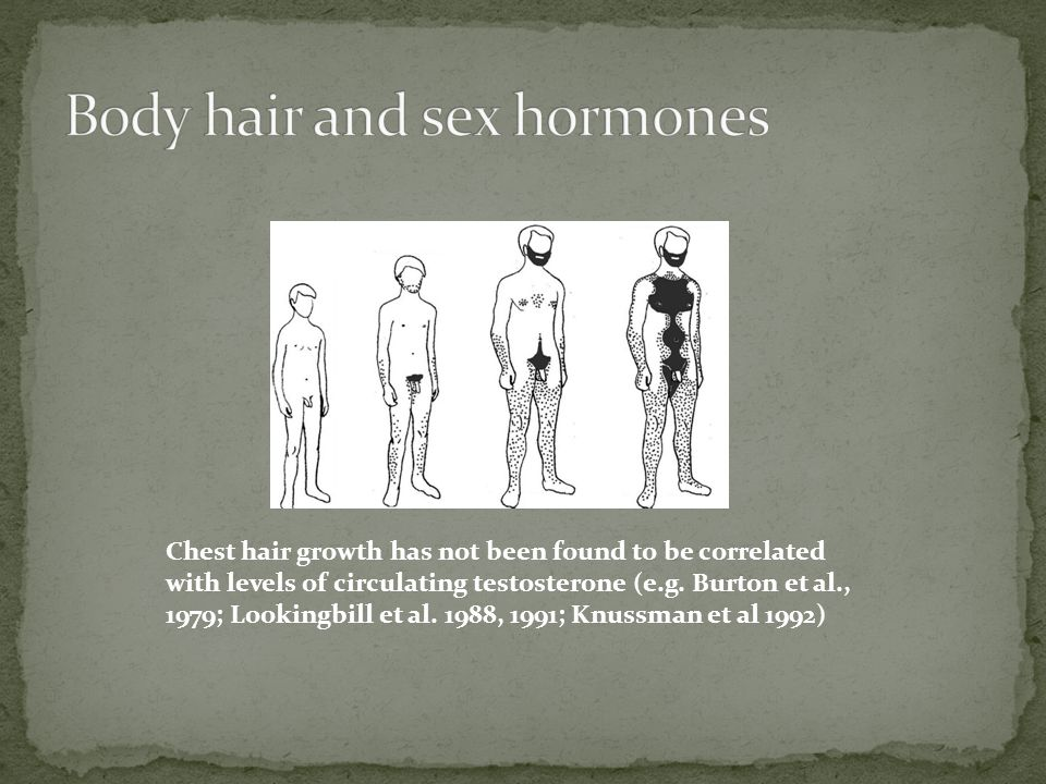 Chest hair growth has not been found to be correlated with levels of circulating testosterone (e.g.