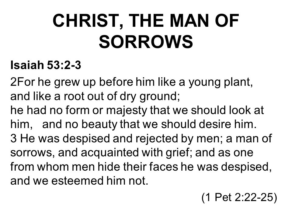 CHRIST, THE MAN OF SORROWS Isaiah 53:2-3 2For he grew up before him like a young plant, and like a root out of dry ground; he had no form or majesty t