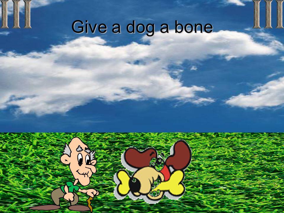 Give a dog a bone