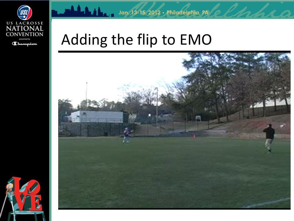 Adding the flip to EMO