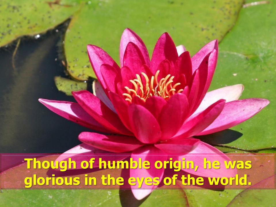 Though of humble origin, he was glorious in the eyes of the world.