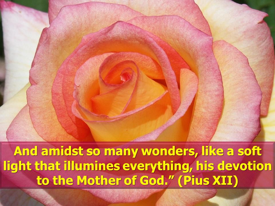 And amidst so many wonders, like a soft light that illumines everything, his devotion to the Mother of God.