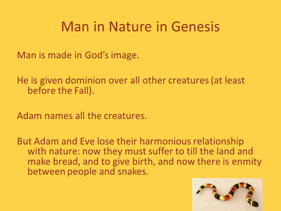 Man in Nature in Genesis Man is made in Gods image.