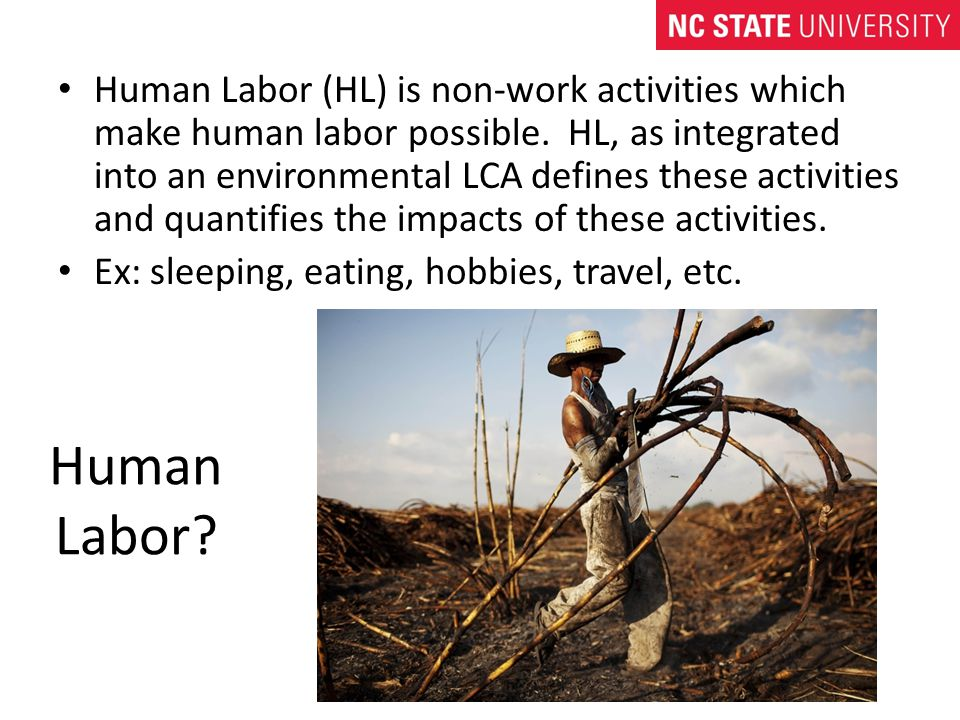 Human Labor. Human Labor (HL) is non-work activities which make human labor possible.