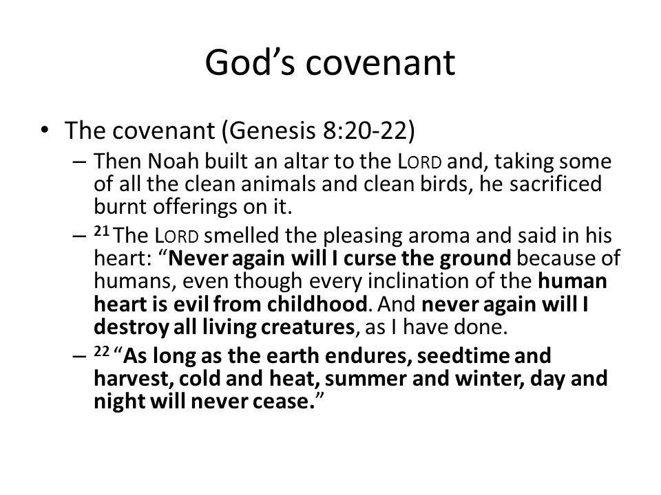 Gods covenant The covenant (Genesis 8:20-22) – Then Noah built an altar to the L ORD and, taking some of all the clean animals and clean birds, he sac