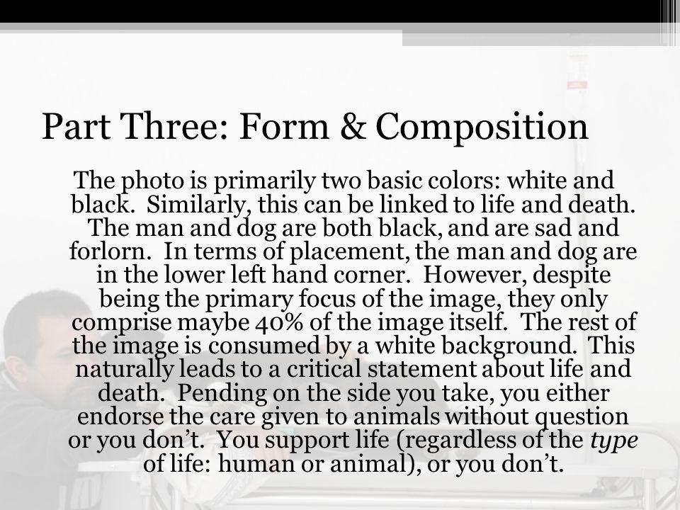 Part Three: Form & Composition The photo is primarily two basic colors: white and black.