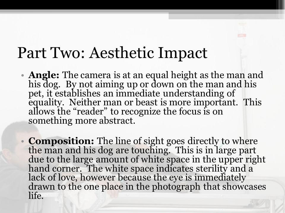 Part Two: Aesthetic Impact Angle: The camera is at an equal height as the man and his dog.