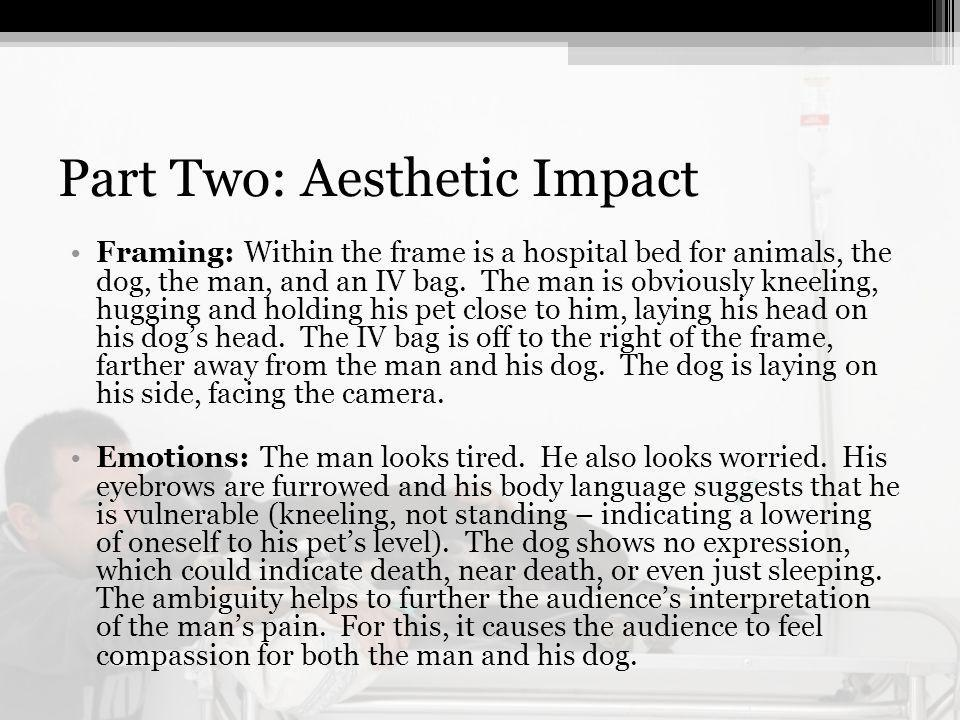 Part Two: Aesthetic Impact Framing: Within the frame is a hospital bed for animals, the dog, the man, and an IV bag.
