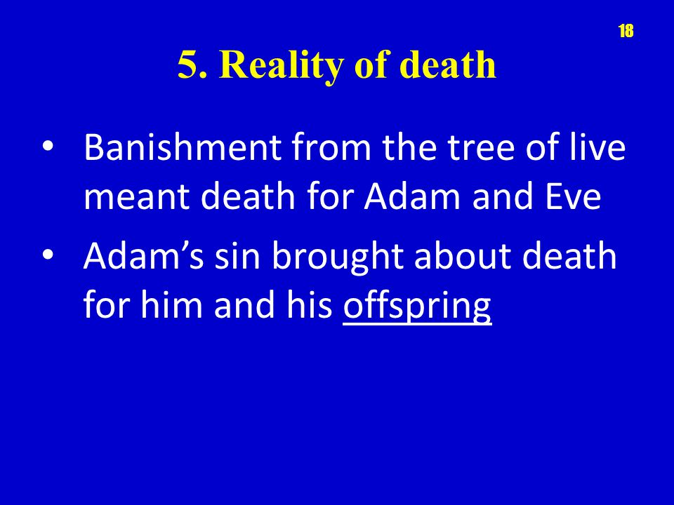 5. Reality of death Banishment from the tree of live meant death for Adam and Eve Adams sin brought about death for him and his offspring 18