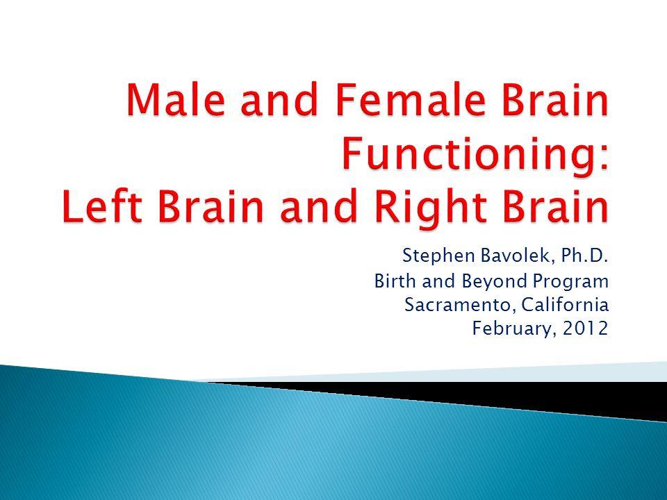 Stephen Bavolek, Ph.D. Birth and Beyond Program Sacramento, California February, 2012