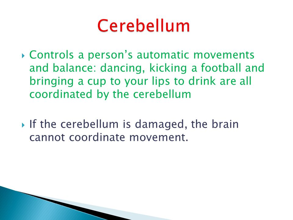 Controls a persons automatic movements and balance: dancing, kicking a football and bringing a cup to your lips to drink are all coordinated by the ce