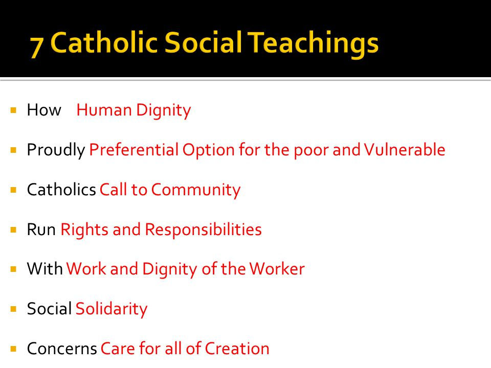 How Human Dignity Proudly Preferential Option for the poor and Vulnerable Catholics Call to Community Run Rights and Responsibilities With Work and Dignity of the Worker Social Solidarity Concerns Care for all of Creation