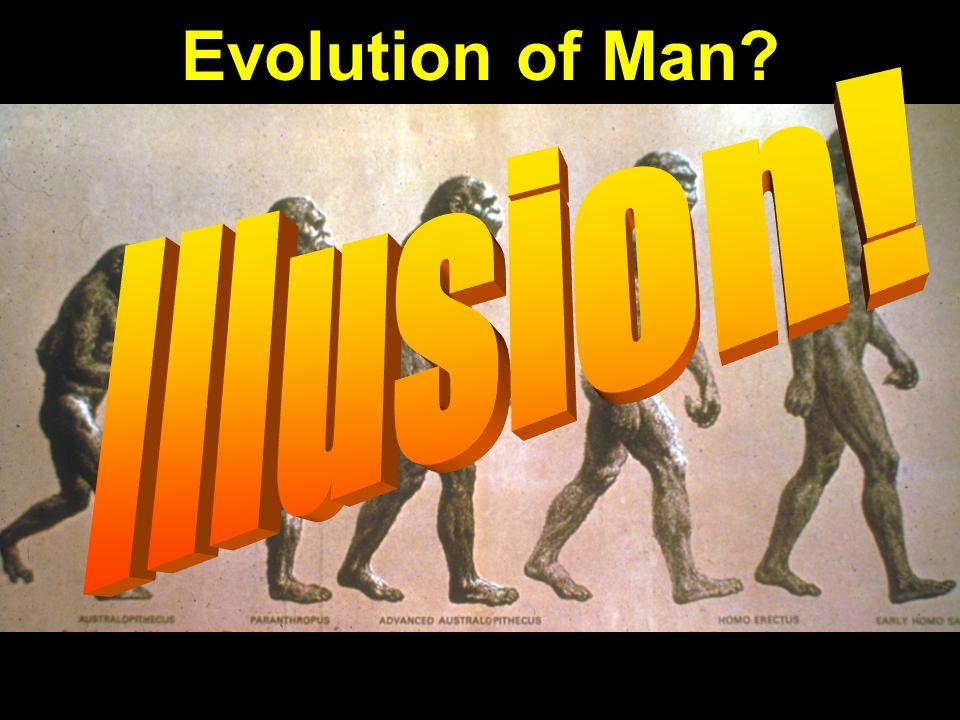 Evolution of manprogression: Illusion! Evolution of Man?