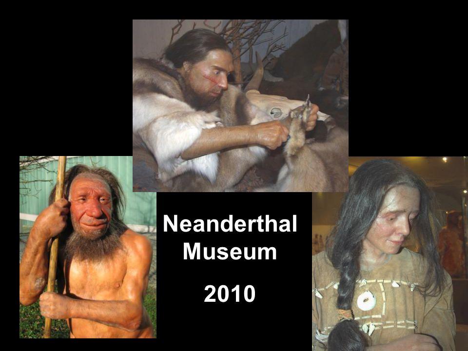 Neanderthal Museum 2010