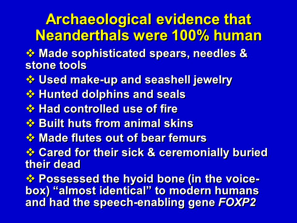 Archaeological evidence that Neanderthals were 100% human Made sophisticated spears, needles & stone tools Used make-up and seashell jewelry Hunted do