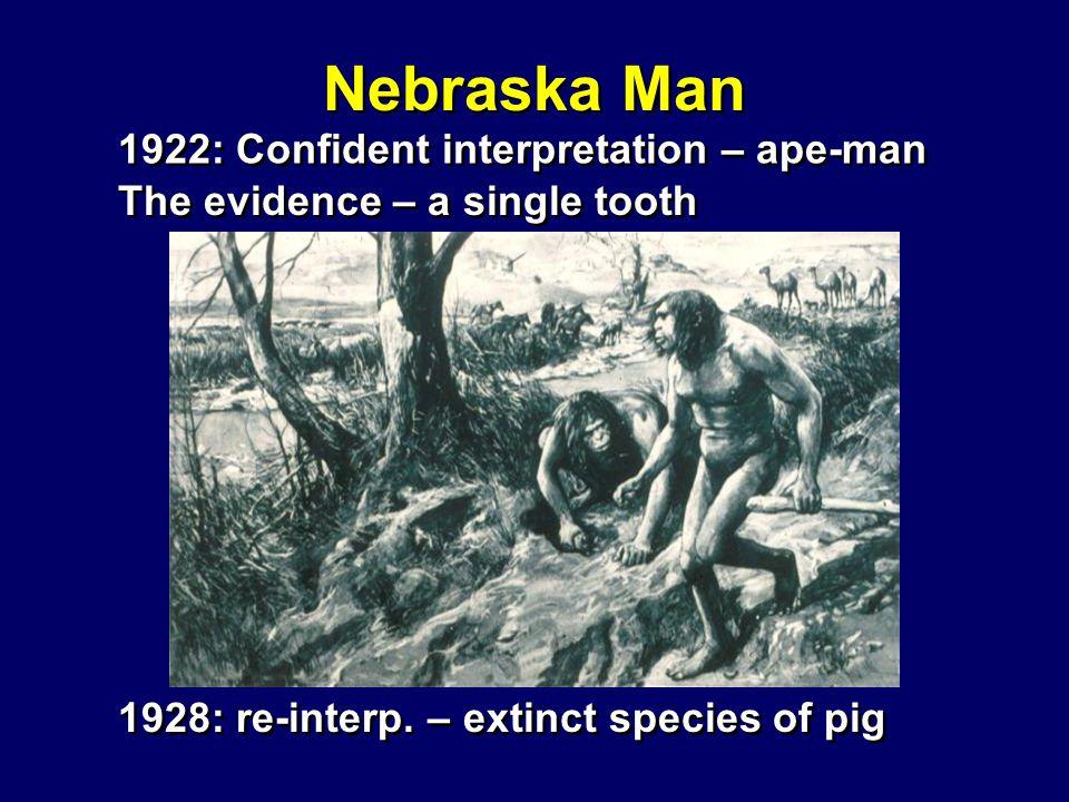 Nebraska Man 1922: Confident interpretation – ape-man 1928: re-interp.