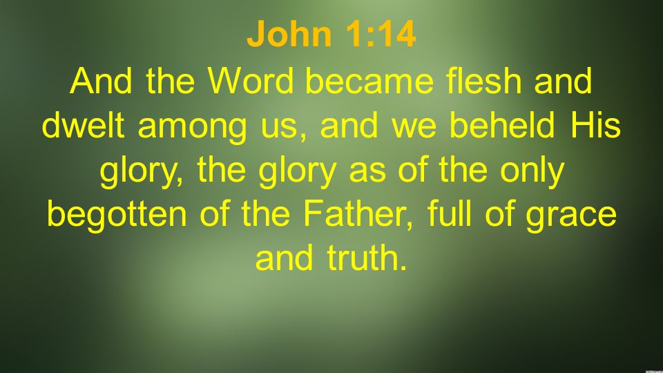 John 1:14 And the Word became flesh and dwelt among us, and we beheld His glory, the glory as of the only begotten of the Father, full of grace and truth.
