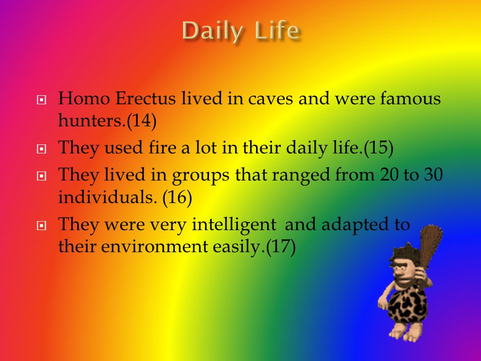 Homo Erectus ate wild animals and also plants growing in the wild.(10) They also started to eat fruit that was hanging on the trees.(11) Before the Ho