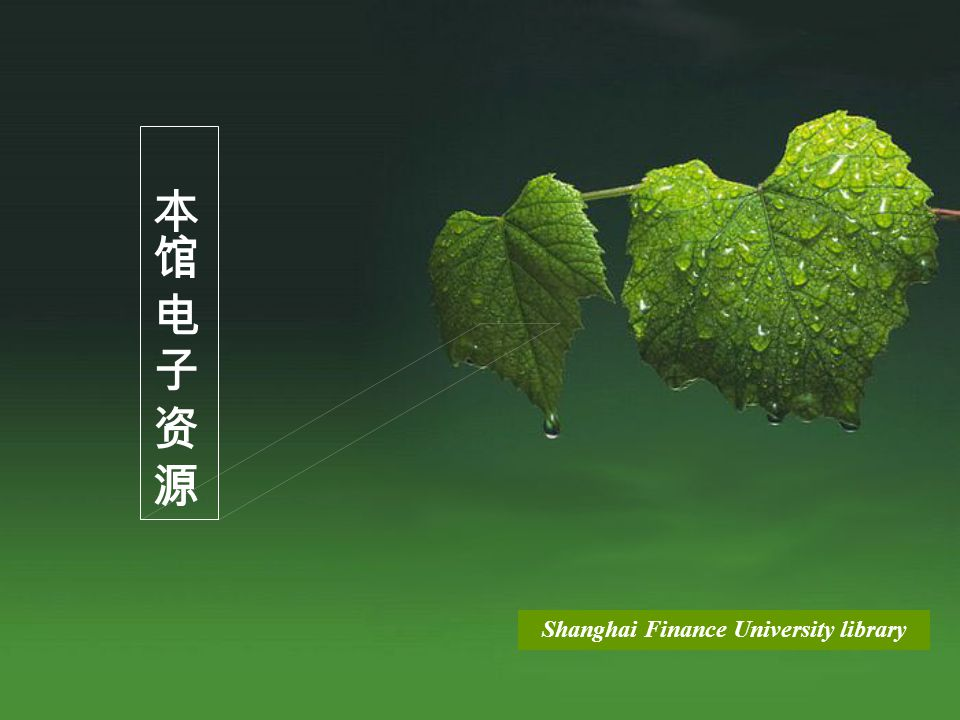 Shanghai Finance University library