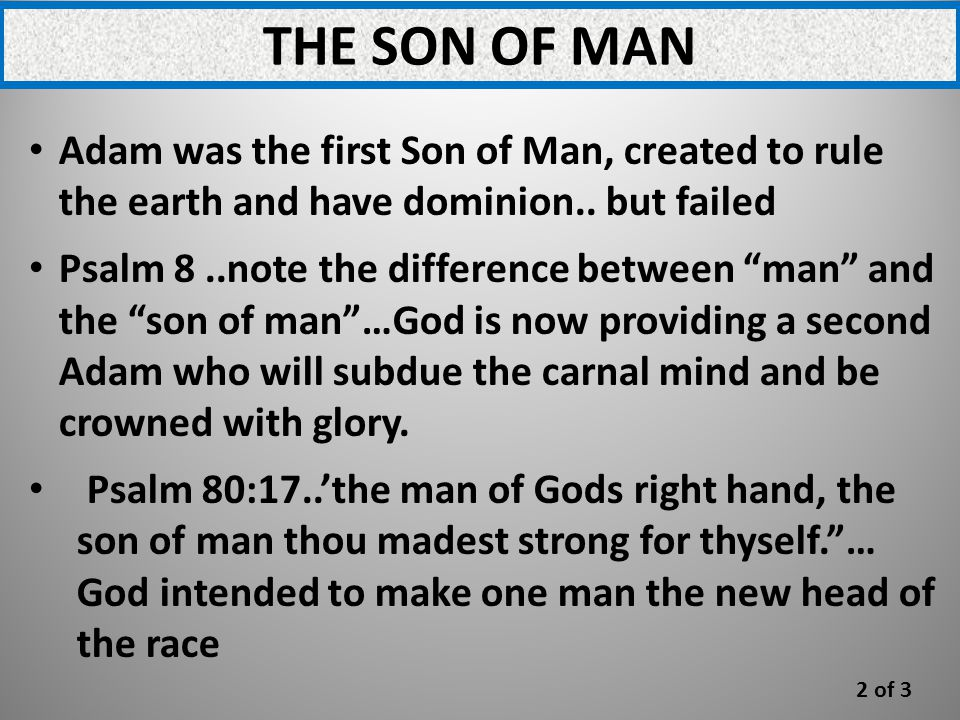 THE SON OF MAN Adam was the first Son of Man, created to rule the earth and have dominion..