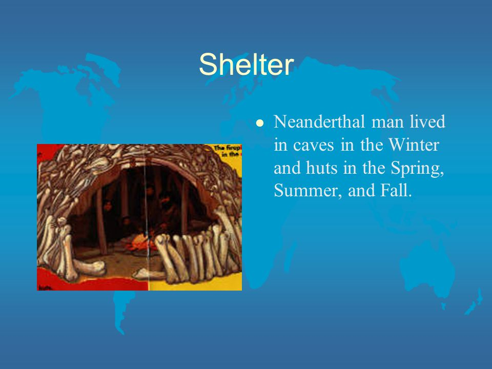 Shelter l Neanderthal man lived in caves in the Winter and huts in the Spring, Summer, and Fall.