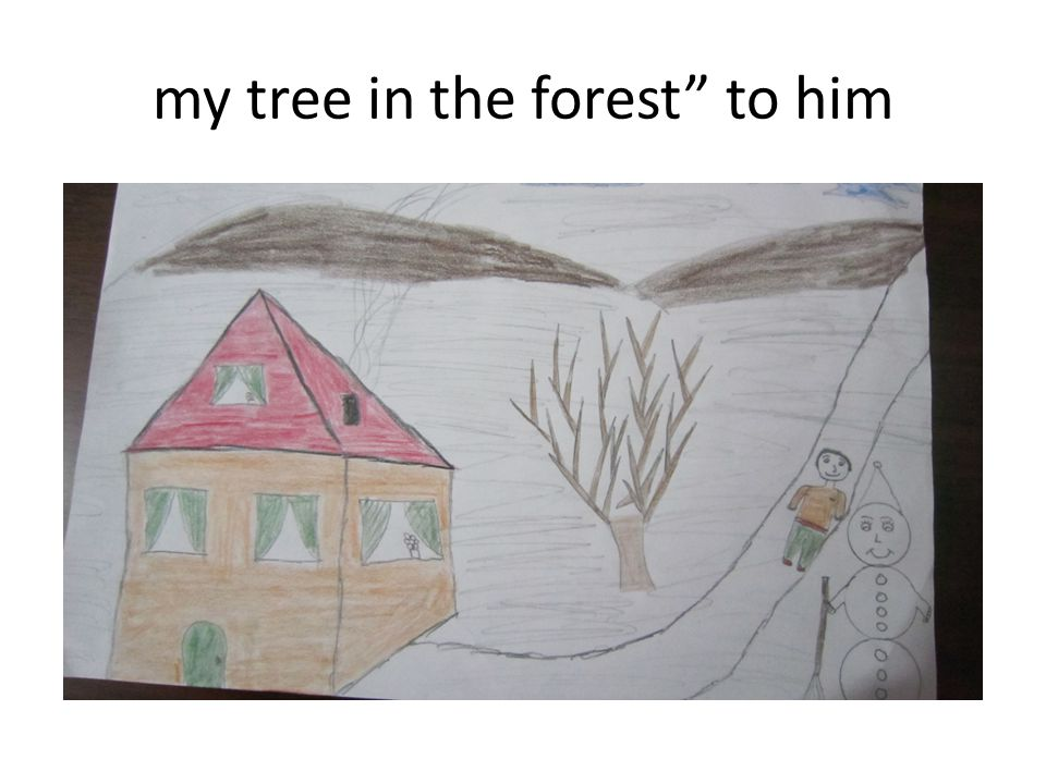 my tree in the forest to him
