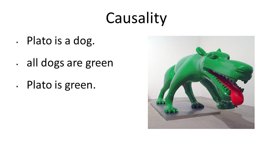 Causality Plato is a dog. all dogs are green Plato is green.