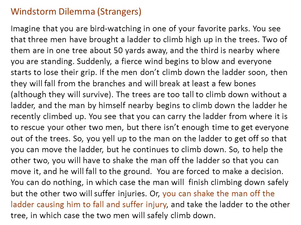 Windstorm Dilemma (Strangers) Imagine that you are bird-watching in one of your favorite parks.