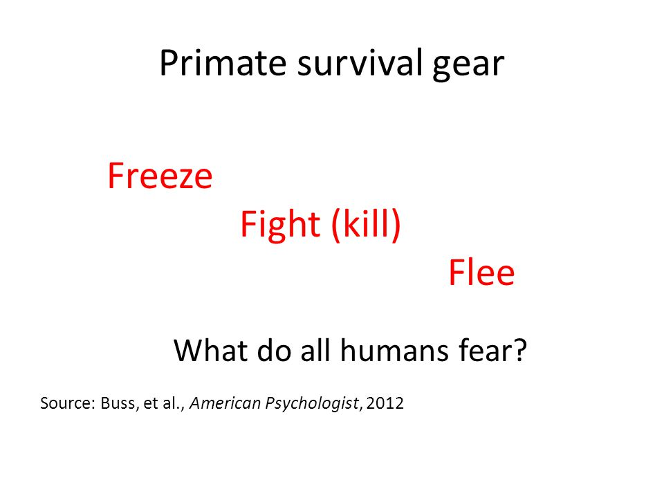 Primate survival gear Freeze Fight (kill) Flee What do all humans fear.
