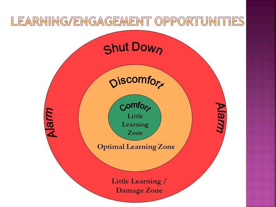 Little Learning Zone Optimal Learning Zone Little Learning / Damage Zone
