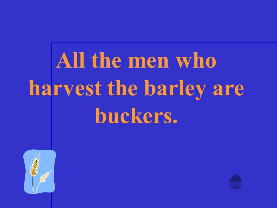 Who and what is a barley bucker?