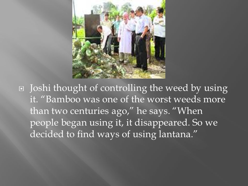 Joshi thought of controlling the weed by using it. Bamboo was one of the worst weeds more than two centuries ago, he says. When people began using it,