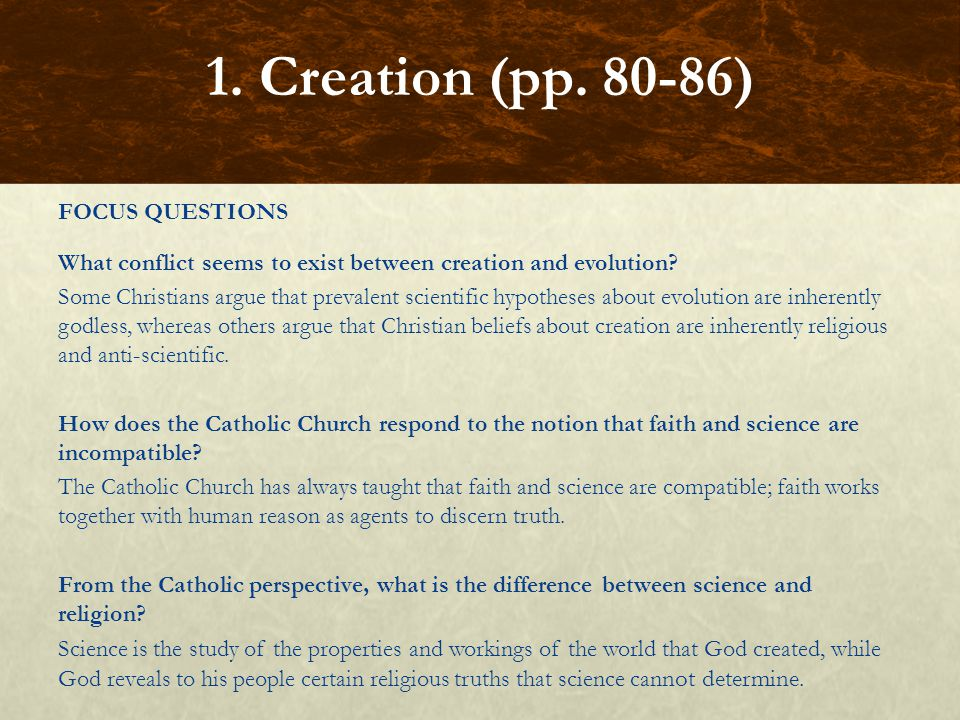 FOCUS QUESTIONS How does the Church read the creation narratives in the Book of Genesis.