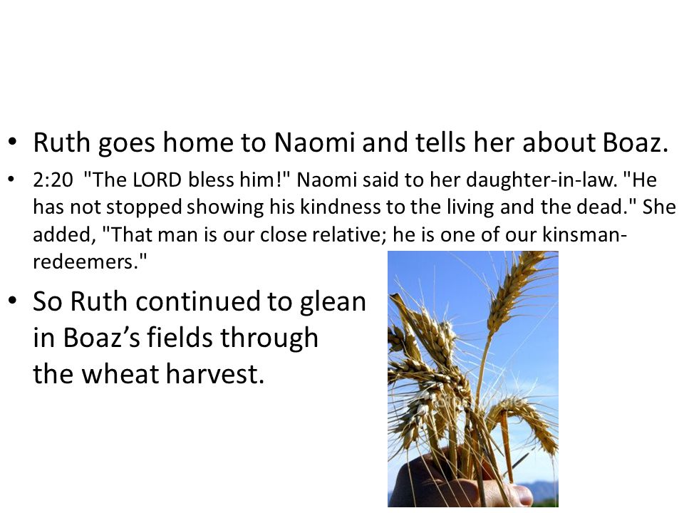 Ruth goes home to Naomi and tells her about Boaz. 2:20