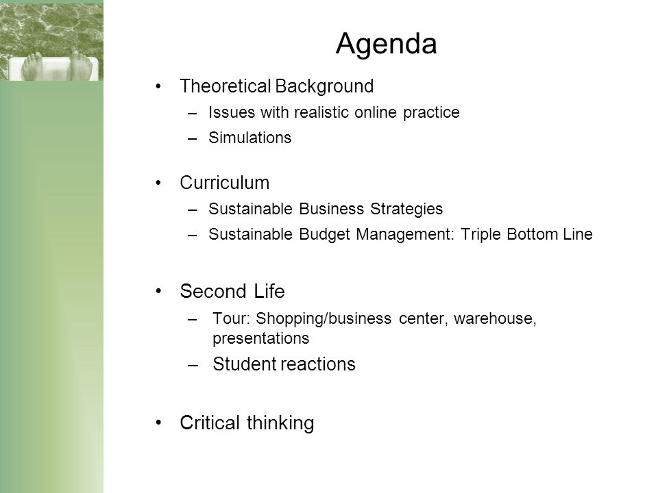 Agenda Theoretical Background –Issues with realistic online practice –Simulations Curriculum –Sustainable Business Strategies –Sustainable Budget Management: Triple Bottom Line Second Life –Tour: Shopping/business center, warehouse, presentations –Student reactions Critical thinking