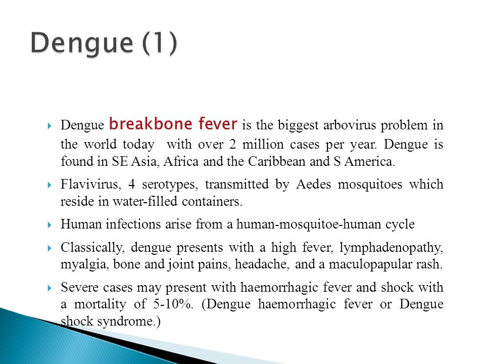 Dengue breakbone fever is the biggest arbovirus problem in the world today with over 2 million cases per year.