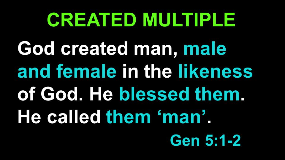 CREATED MULTIPLE God created man, male and female in the likeness of God.