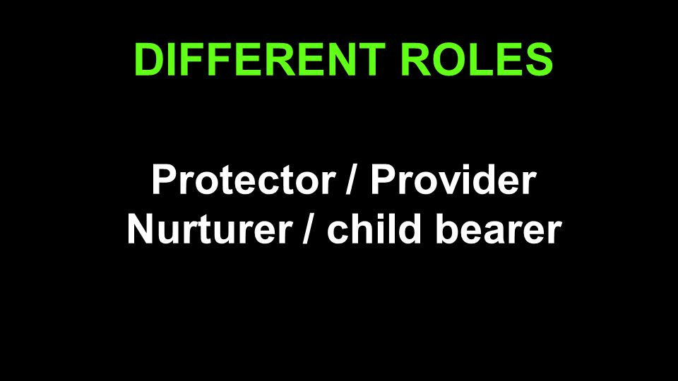 DIFFERENT ROLES Protector / Provider Nurturer / child bearer